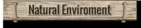 Natural-Enviroment